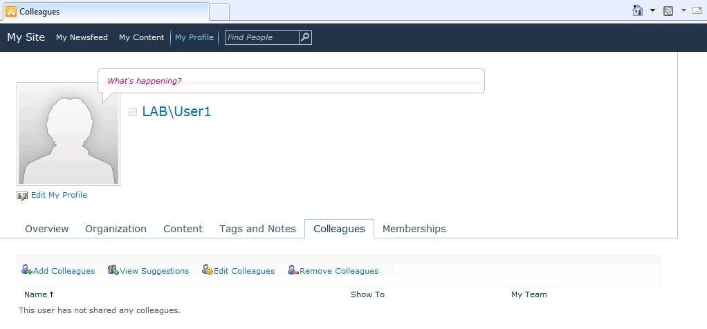 SharePoint 2010 users can now access the Colleagues tab.